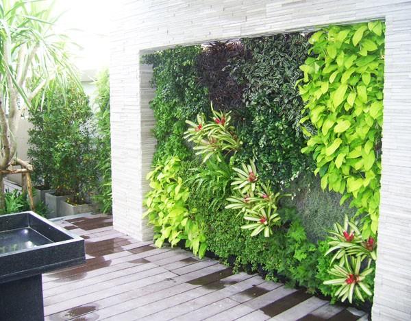 Thi công sân vườn Nha Trang